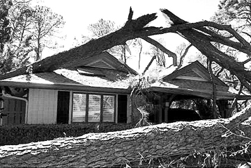 The Bests' house at Hilton Head, after Hurrican Matthew and a tornado hit.