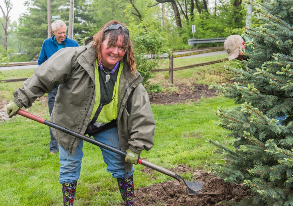 Undeterred by a steady drizzle, Quivira Gardener Lori Keller helps plant the tree. Behind her is Tree Committee Chair, Joe Bartels. Photo by Ron Bower